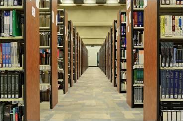Publications scientifiques et professionnelles