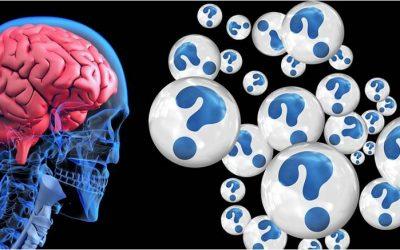 Humanité et Intelligence Artificielle Questions Philosophiques